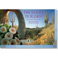 Blank Assortment - Desert Bloom