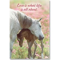 Magnet - Love is what life is all about.
