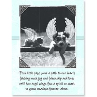Pet Sympathy Card (Pack of 6)