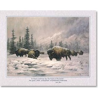 Poster - Buffalo Wilderness