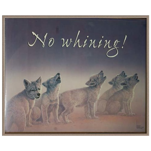 Poster - No Whining!